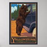 Mata inte björnarna - den Yellowstone nationalpark Affischer