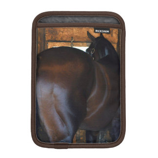 MaterialityFlorida Derby vinnare iPad Mini Sleeve
