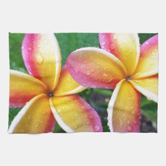 Maui Hawaii Plumeriablommor Kökshandduk