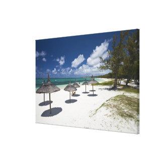 Mauritius östliga Mauritius, BelleMare, Canvastryck