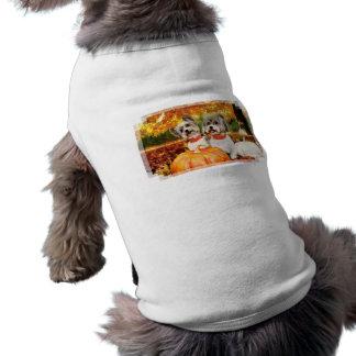 Max & Leo - Yorkies nedgångthanksgiving - Husdjurströja
