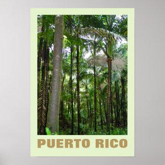MedborgareRainforest, Puerto Rico Poster