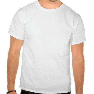 Medeltida flicka på trappor t shirts