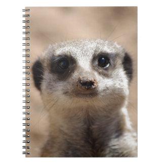 Meerkat Anteckningsbok Med Spiral