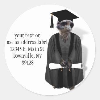 Meerkat doktorand- W/Grey kappa & svartfönsterram Runt Klistermärke