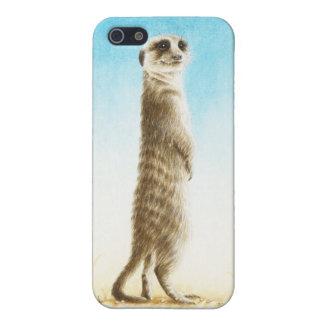 Meerkat iPhone 5 Cases