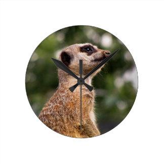 Meerkat Rund Klocka