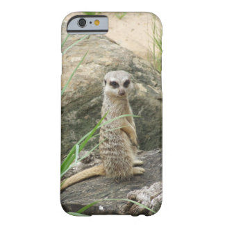 Meerkat smart mobilt fodral barely there iPhone 6 skal