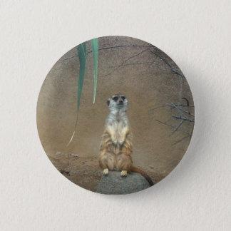 Meerkats Standard Knapp Rund 5.7 Cm