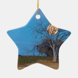 Mega bävermåne julgransprydnad keramik