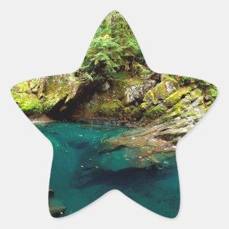 Mer regnig trädOhanapecosh flod Mt Stjärnformat Klistermärke
