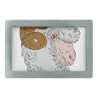 Merinoen rammar den Head teckningen för får