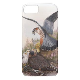 Merlin falkJohn Gould fåglar av Storbritannien