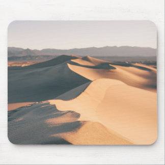 MesquiteSanddyner i Death Valley Musmatta
