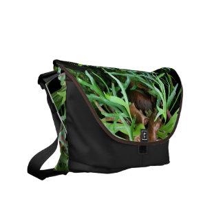 Messenger bag för Staghorn Fern