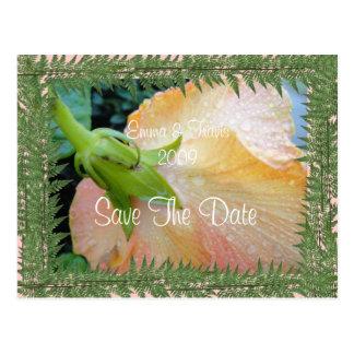 Mest tenderest handlag vykort