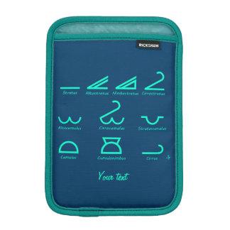 Meteorology iPad Mini Sleeve
