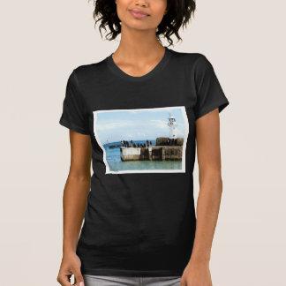 Mevagessy fiske tshirts
