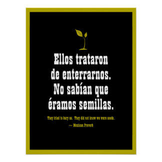 Mexicansk Proverb Poster