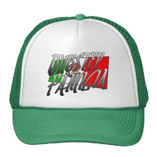 Mexico Dubstep Familia camisetaMX DUBSTEP Keps