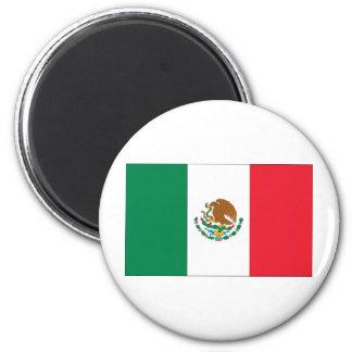 Mexico flagga magnet