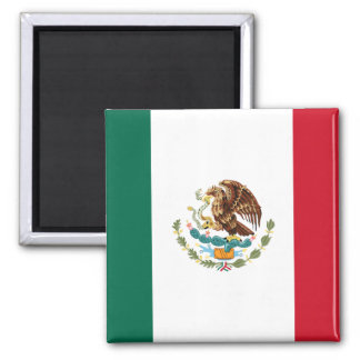 Mexico flaggamagnet 2 magnet