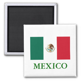Mexico flaggamagnet magnet