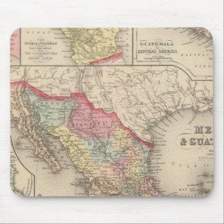 Mexico och Guatemala 4 Musmatta