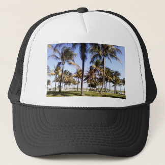 Miami palmträd keps