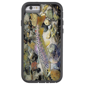 Michigan brun forell tough xtreme iPhone 6 skal