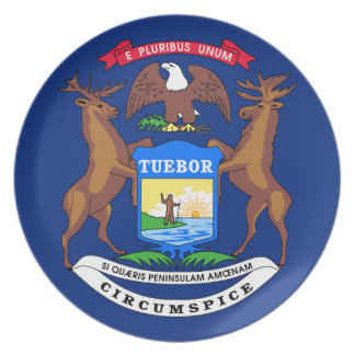Michigan flagga tallrik
