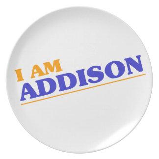 Mig förmiddag Addison Tallrik