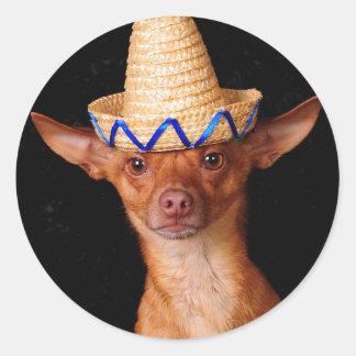 Mig förmiddag en hund, inte en mexikan! runt klistermärke