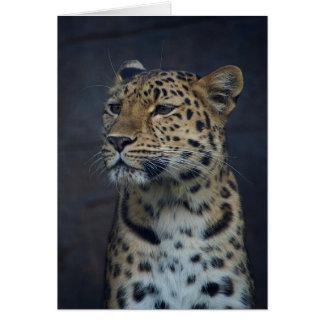 Milena den Amur leoparden Hälsningskort