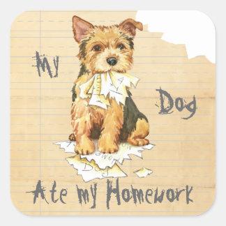 Min åt för Norwich Terrier min läxa Fyrkantigt Klistermärke