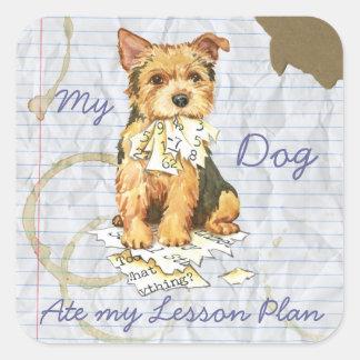Min åt för Norwich Terrier som min kurs planerar Fyrkantigt Klistermärke