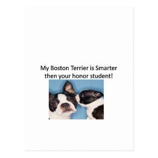Min Boston Terrier är mer smart därefter din Vykort