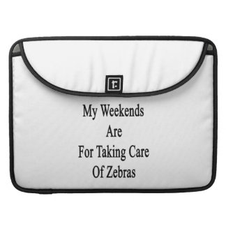 Min helger är för att ta omsorg av zebror