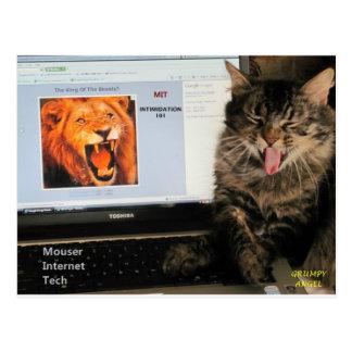 Min kattstudier på Tech för MIT-Mouserinternet Vykort