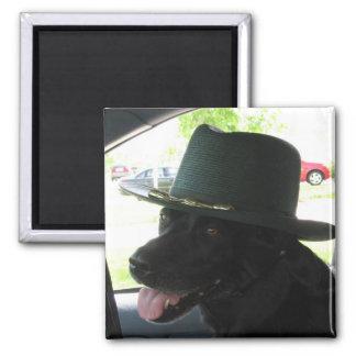 Min Labrador Magnet