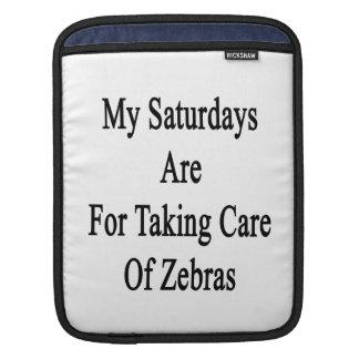 Min lördagar är för att ta omsorg av zebror sleeves för iPads