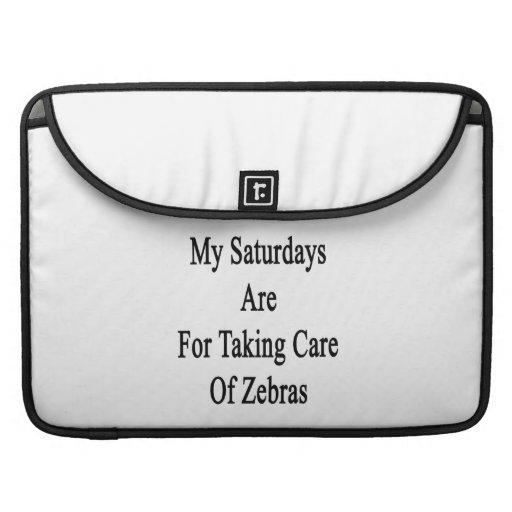 Min lördagar är för att ta omsorg av zebror