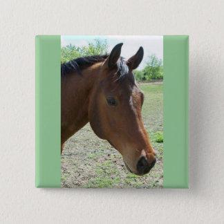 Min vän, hästen standard kanpp fyrkantig 5.1 cm