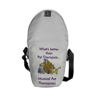 mini- messenger bag