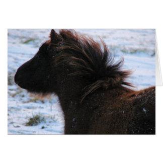 Mini- ungsto i vintern, jul hälsningskort