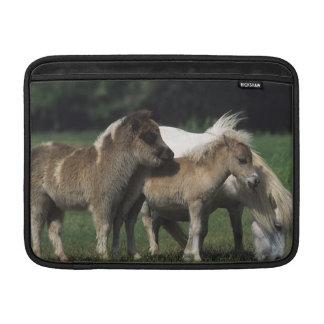 MiniatyrMare & föl 3 MacBook Sleeve