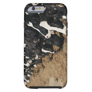 Minska perspektiv av ko att beta för huvud tough iPhone 6 case