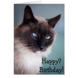 Misstrogen eller grumpy katt: Lycklig? Födelsedag! Hälsningskort