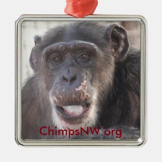 Missyschimpansen kvadrerar prydnaden julgransprydnad metall