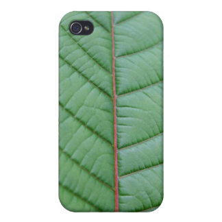 Mitragyna Speciosa löv iPhone 4 Cases